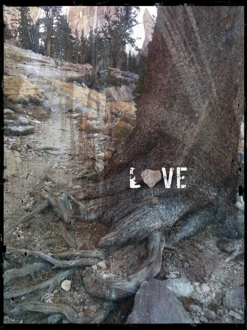 love_pct